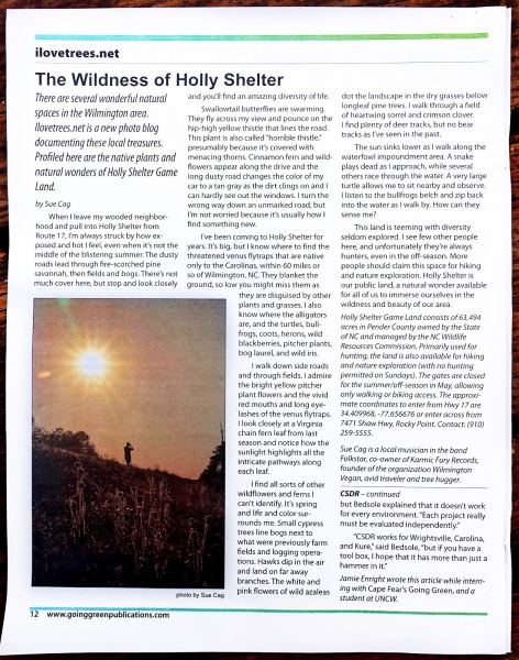 Holly Shelter